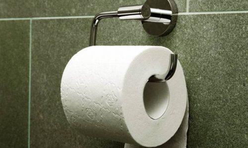 廁紙扔馬桶還是垃圾桶